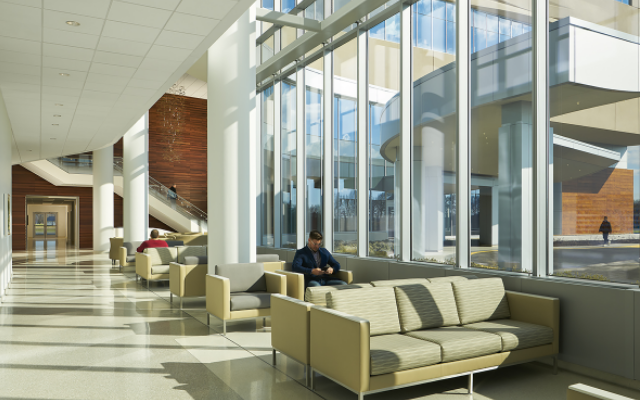 Bayhealth 医院   展现自然的治愈能力