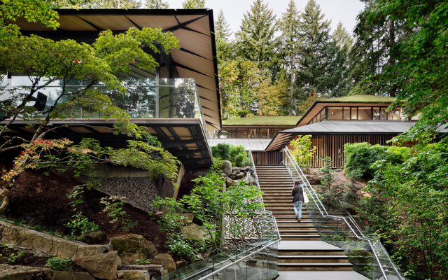 文化交流将波特兰日本花园转变为文化对话的场所