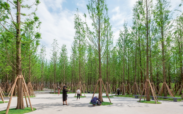 重庆森林公园